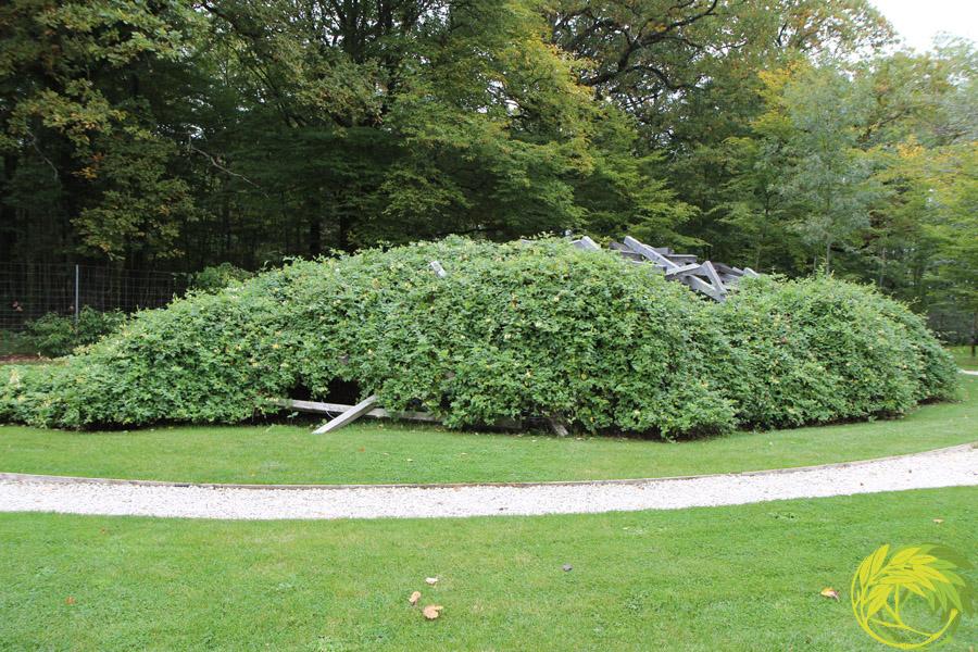 Festival international des jardins chaumont sur loire 2015 for Le jardin qui dit non