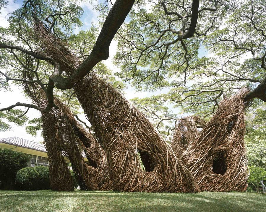 Na Hale 'Eo Waiawi (Honolulu) (© Paul Kodama)