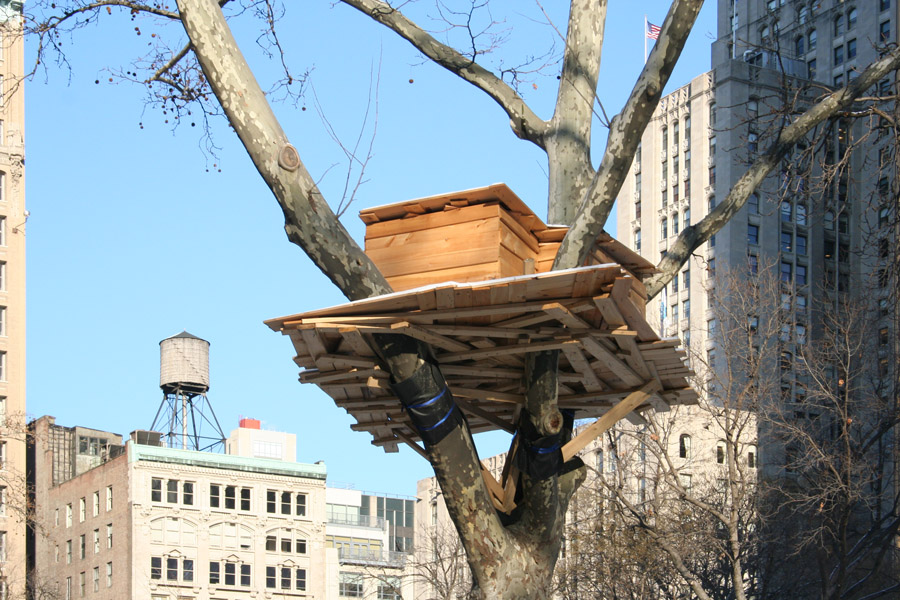 Tree Hut in New-York (New-York) (© Madison Square Park)
